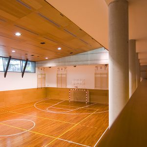 sports floor, Timber flooring, wood floor